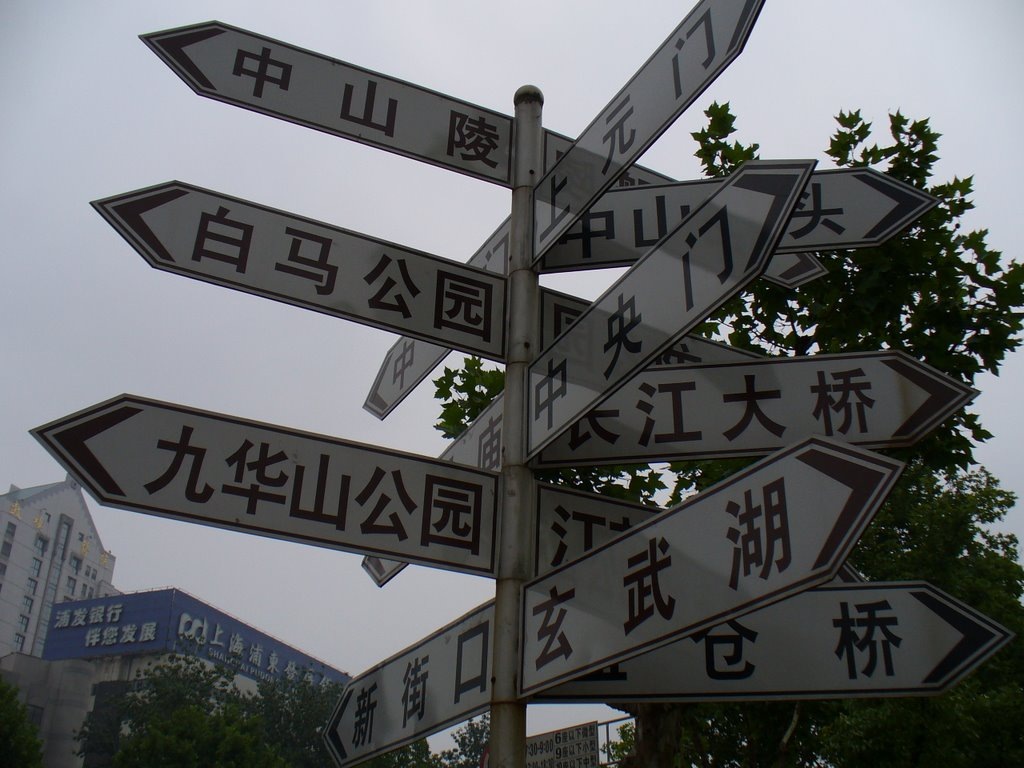 Many Directions